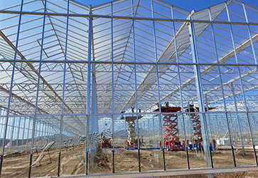 Lanzhou New District Agricultural Ex···