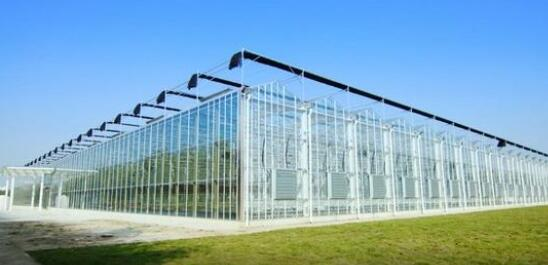 Which glass to choose for smart glass greenhouse?