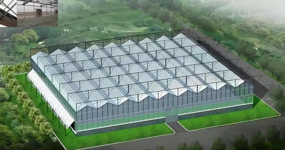 What is a glass greenhouse?